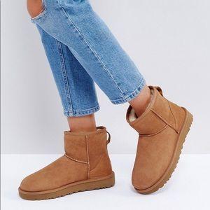 UGGS classic mini boots Chestnut